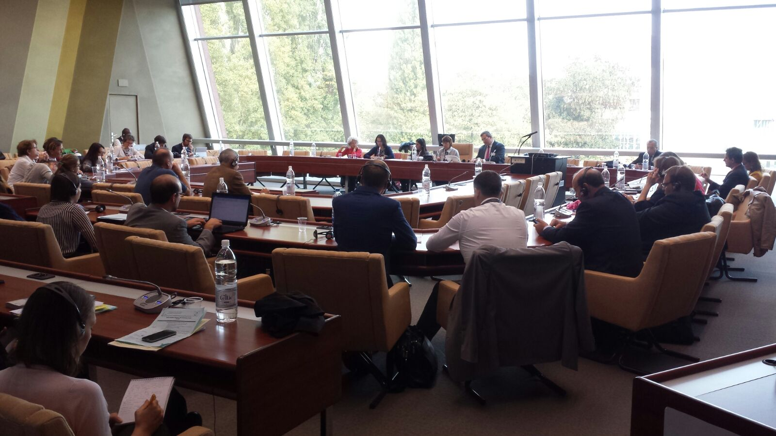 PACE side event surrogacy